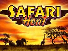 Safari Heat - игровые аппараты онлайн