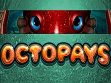 Онлайн автомат на деньги Octopays